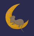 little mouse is sleeping on the moon fairy animal vector image