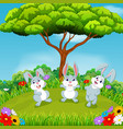 beautiful view with three rabbits vector image