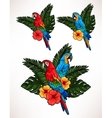 Macaw and palm leaves vector image vector image