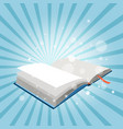 mystery open book vector image