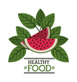 organic and healthy food vector image vector image
