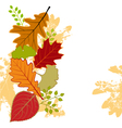 Abstract colorful autumn leaf vector image
