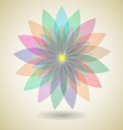 Colorful flower with shadow background vector image vector image