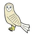comic cartoon owl vector image vector image
