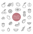 fruits and berries lines icons vector image