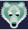 Green low poly bear vector image vector image
