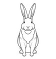 rabbit hand drawn style on white background vector image vector image