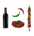 bbq elements - wine bottle steak meat of stick vector image