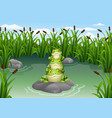 cartoon frog stacked in the pond vector image vector image