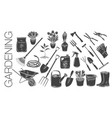 gardening tools and plants vector image vector image