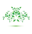 isolated green leaf on white background vector image vector image
