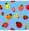 Seamless the ladybugs vector image vector image