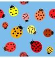 Seamless the ladybugs vector image