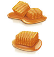 set of honey combs candy vector image