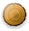 wooden cut clip-art vector image vector image