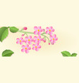 banner with a branch of cherry blossoms with vector image vector image