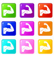 biceps set 9 vector image vector image