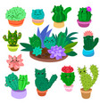 cute cartoon cactus and succulents set on hand vector image vector image