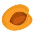 half peach icon cartoon style vector image vector image