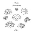 hand drawn succulents contours set isolated vector image