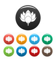 lotus flower icons set color vector image