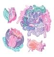 Pastel Doodle Romantic Flowers vector image vector image