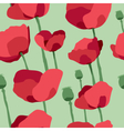 Red poppies on field seamless pattern vector image