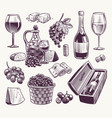 sketch wine winemaking classical alcoholic drink vector image vector image