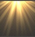 sunlight isolated sun light effect golden sun vector image vector image
