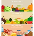 Three design banners set with vegetables and vector image
