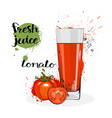tomato juice fresh hand drawn watercolor vegetable vector image vector image