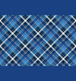 blue abstract check textile seamless pattern vector image vector image