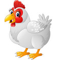 cartoon hen isolated on white background vector image vector image