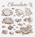 chocolate elements collection hand drawing cocoa vector image