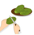 edible green cactus leaves or nopales on white vector image