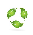 natural leaf group icon logo vector image vector image