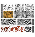 seamless pattern dalmatian leopard spots vector image vector image
