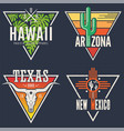 set of hawaii arizona texas new mexico tee prints vector image
