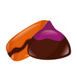 sweet chocolate bonbon and macaron vector image