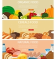 Three design banners set with fruits and vector image vector image