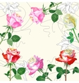 Background with red roses1-04 vector image vector image