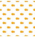 mandarin pattern vector image