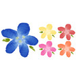 watercolor painting of flowers in five colors vector image