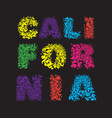 California surf typography t-shirt graphics vector image