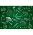 vegetables doodles school board vector image