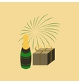 flat on background of fireworks vector image