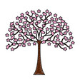 japanese tree plant icon vector image vector image