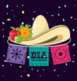 mexican hat of death day vector image