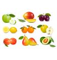 set sweet fruit vector image vector image