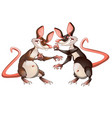 two evil animated mouse fighting each other vector image vector image
